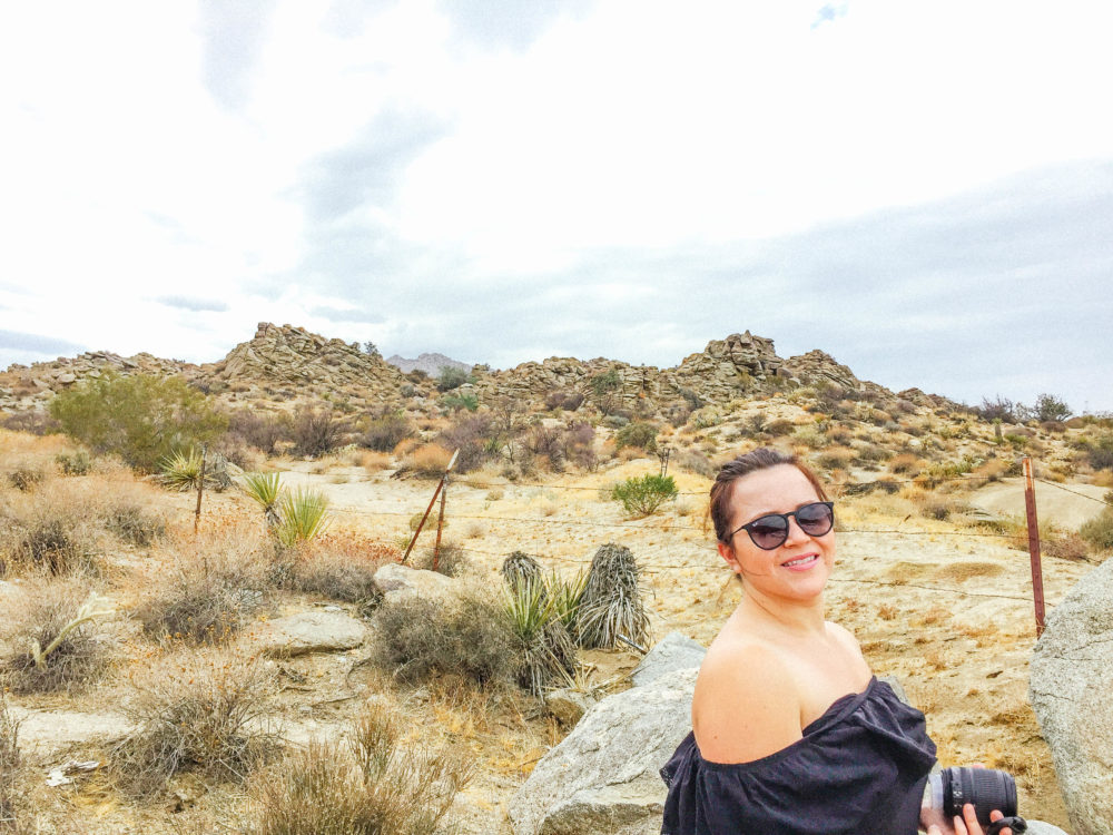 A short photo recap of our life lately this summer. We went to Palm Springs, San Diego, drove a Ford Fusion and beach time!