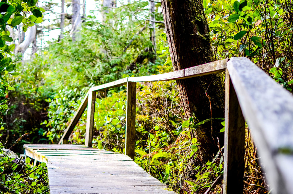 A recap of our amazing stay at the Long Beach Lodge in Tofino, BC. A lodge offering world class dining, surfing and other adventures.