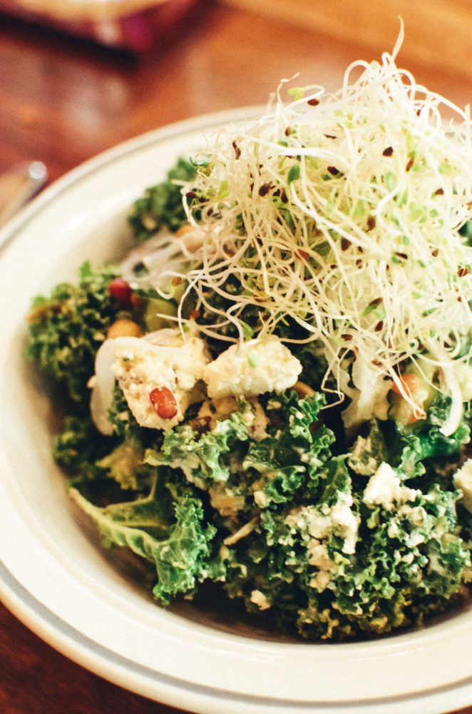 Wolf in the Fog, Tofino. Kale Salad